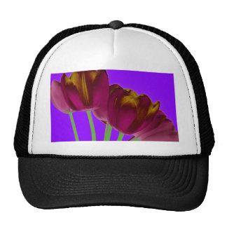 Копия que sorprende Tulips3 Gorras