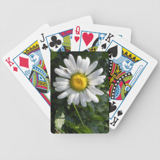 Сamomile Bicycle Playing Cards
