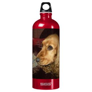 Сocker Aluminum Water Bottle