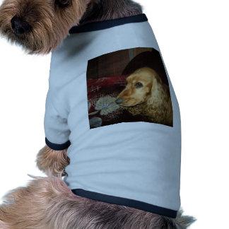 Сocker Camisetas De Perro