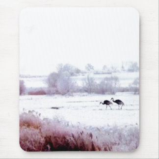 ♠»¦๑A lovely pair of cranes Mouse Pad๑¦«♠ Mouse Pad