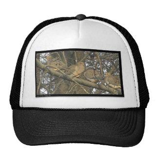 ℑм℘ґℯṧṧї♥℮ trucker hats