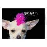 ありがとう Thank You Punk Chihuahua greeting card