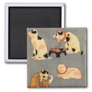 たとえ尽の内(中), 国芳 Japanese Cats(2), Kuniyoshi, Ukiyo-e Magnet
