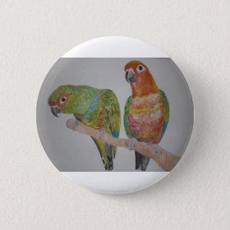 オウム パロットConure pair hanging out Pinback Button