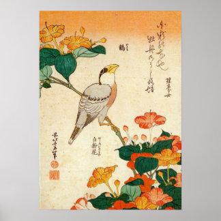 オシロイバナに小鳥, 北斎 Bird and Mirabilis Jalapa, Hokusai Poster