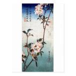 八重桜に鳥, flor de cerezo y pájaro, Hiroshige, Ukiyoe Postales