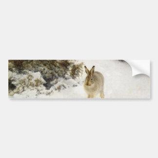 冬 野兎 バンパーステッカー