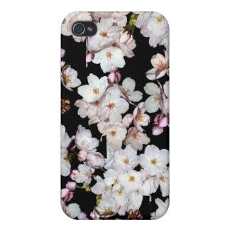 募金用, 桜 de las flores de cerezo iPhone 4/4S fundas