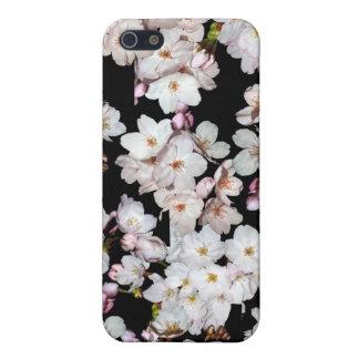 募金用, 桜 de las flores de cerezo iPhone 5 fundas