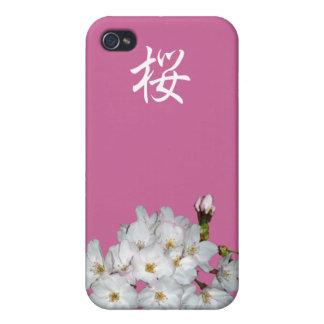 募金用 Cherry blossoms 桜 iPhone 4/4S Case