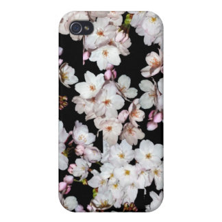 募金用 Cherry blossoms 桜 iPhone 4 Covers