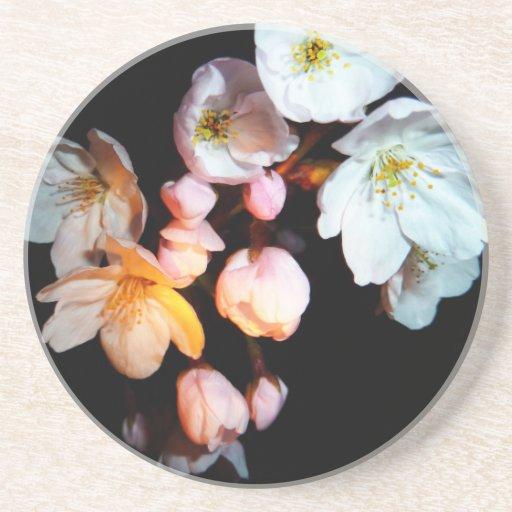 募金用 , Cherry blossoms , 桜 Posavasos Manualidades