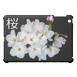 募金用, flores de cerezo, 桜