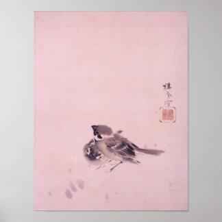 双雀, par del gorrión, Seihō, arte japonés del 栖鳳 Impresiones