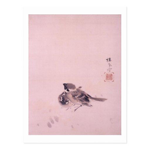 双雀, par del gorrión, Seihō, arte japonés del 栖鳳 Postales