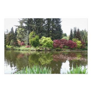 夏季美丽的植物园景观, jardín botánico hermoso fotografías