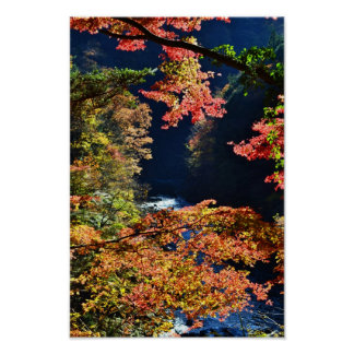 奥多摩の紅葉 (Momiji at Okutama) Poster