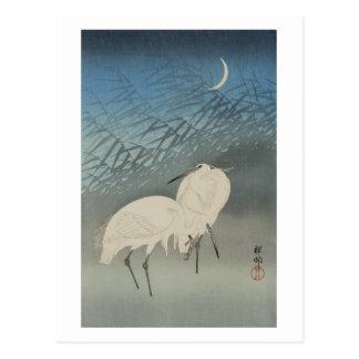 月と白鷺, 古邨 Egrets & Moon, Koson, Ukiyo-e Postcard