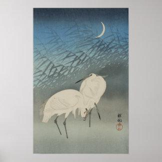 月と白鷺 Egrets y luna Koson Ukiyo-e del 古邨 Impresiones
