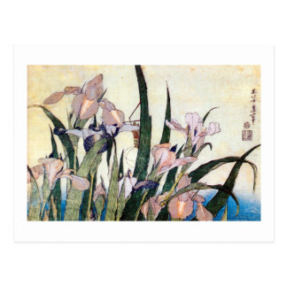 杜若ときりぎりす, 北斎 Iris and Grasshopper, Hokusai Postcard