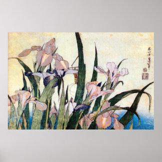 杜若ときりぎりす iris y saltamontes Hokusai del 北斎 Posters