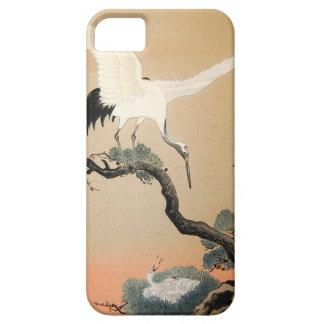 松に鶴, 古邨 Crane on Pine Tree, Koson, Ukiyo-e iPhone SE/5/5s Case