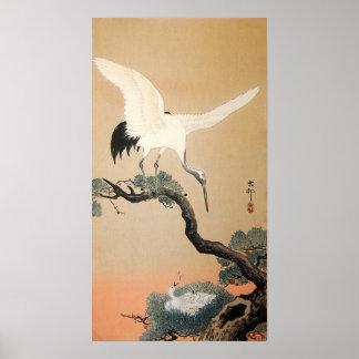 松に鶴, grúa del 古邨 en el árbol de pino, Koson, Póster