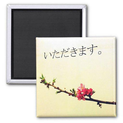 桜と日本語 IMÁN CUADRADO