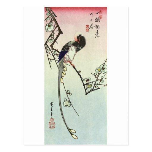 梅に尾長鳥, árbol de ciruelo del 広重 y pájaro, tarjeta postal
