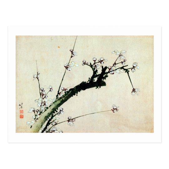 梅花, 北斎 Plum Blossoms, Hokusai, Ukiyo-e Postcard