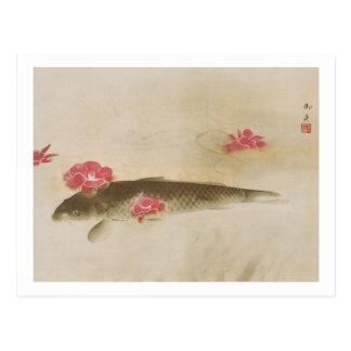 椿と鯉, camelia y carpa, Gyoshū del 速水御舟 Postal