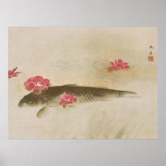 椿と鯉, camelia y carpa, Gyoshū del 速水御舟 Póster