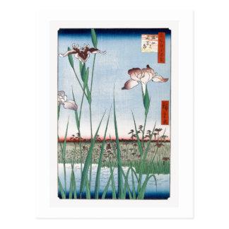 歌川広重「堀切の花菖蒲」 Horikiri Iris Garden Hiroshige Post Cards