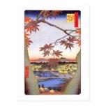 江戸の紅葉, 広重 Maple of Edo, Hiroshige, Ukiyo-e Post Card