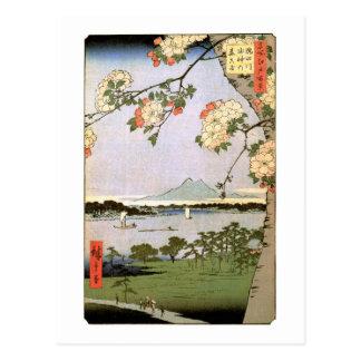 江戸 桜 flores de cerezo del 広重 de Edo Hiroshige Postales