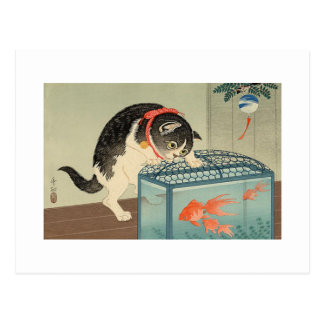 猫と金魚, gato y Goldfish, Koson, Ukiyo-e del 古邨 Postales