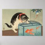 猫と金魚, gato y Goldfish, Koson, Ukiyo-e del 古邨 Póster