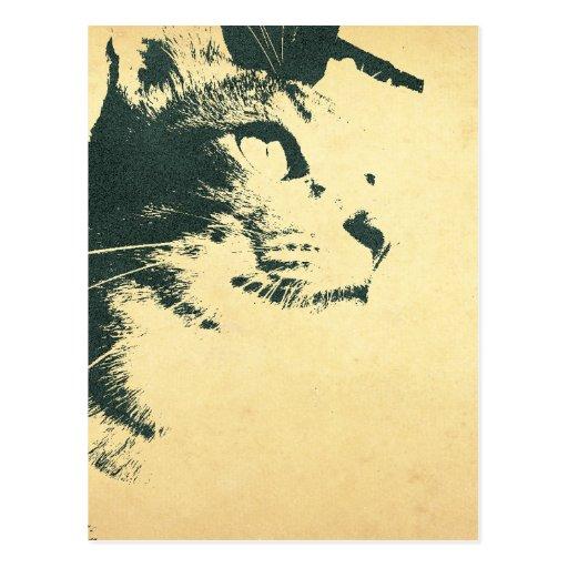 猫のポストカード 葉書き