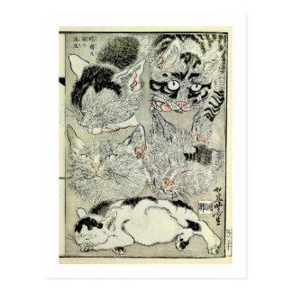 猫, gatos del 暁斎, Kyōsai, Ukiyo-e Tarjetas Postales