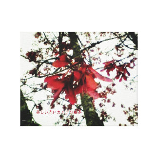 美しい赤いカエデの種子 CANVAS PRINT