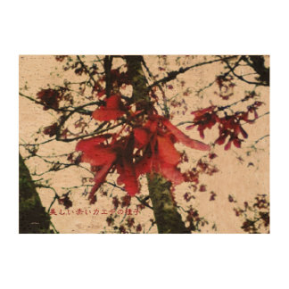 美しい赤いカエデの種子 CORK PAPER