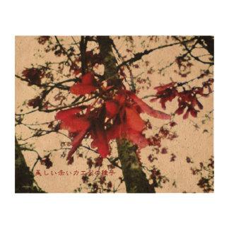 美しい赤いカエデの種子 QUEORK PHOTO PRINT
