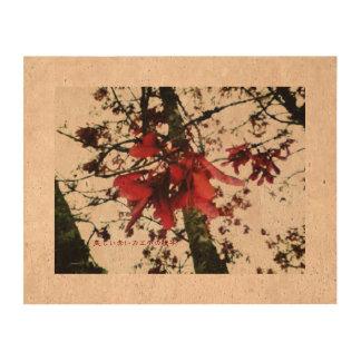 美しい赤いカエデの種子 CORK PAPER PRINT