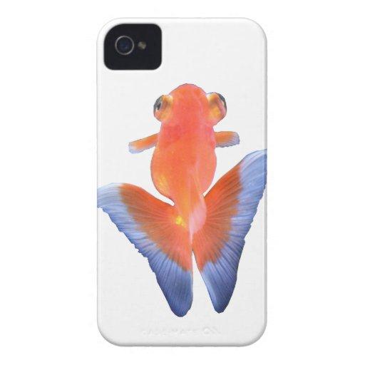 金魚 iPhone 4 Case-Mate COBERTURAS