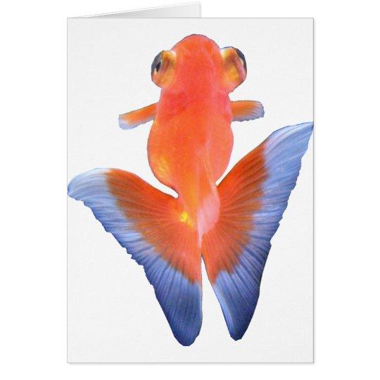 金魚 TARJETA DE FELICITACIÓN