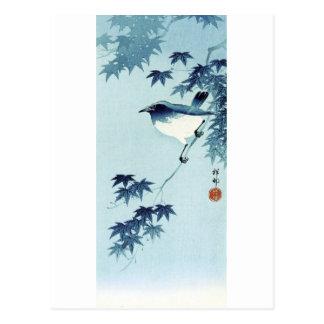 青い鳥, pájaro del 古邨 en el azul, Koson, Ukiyo-e Tarjetas Postales