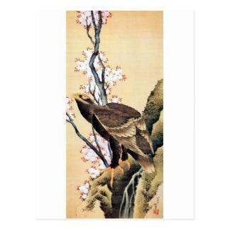 鷲と桜, 北斎 Eagle and Cherry Blossoms, Hokusai Postcard
