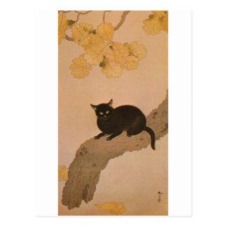 黒猫, gato negro del 春草, Shunsō Tarjeta Postal