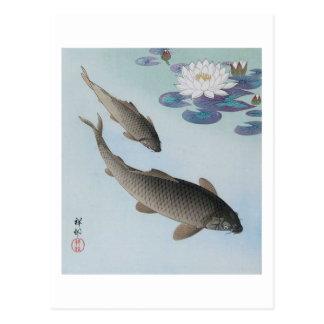 黒鯉, 古邨 Black Carp, Koson, Ukiyo-e Postcard